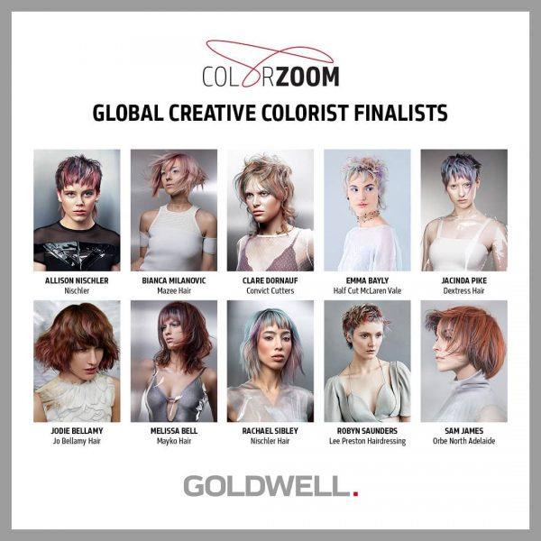 Goldwell Creative Colorist Finalist 2018
