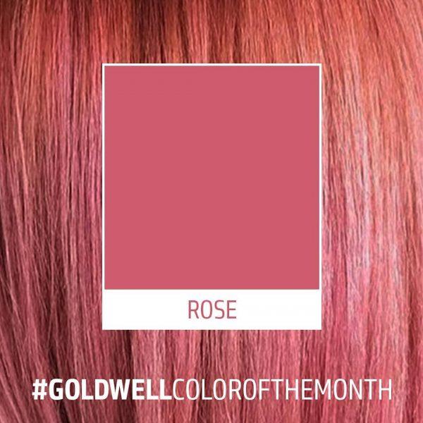 Goldwell Rose